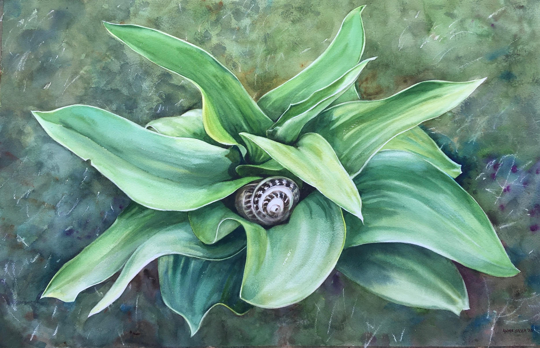 Bebbuxu, 63x99cm, Watercolour