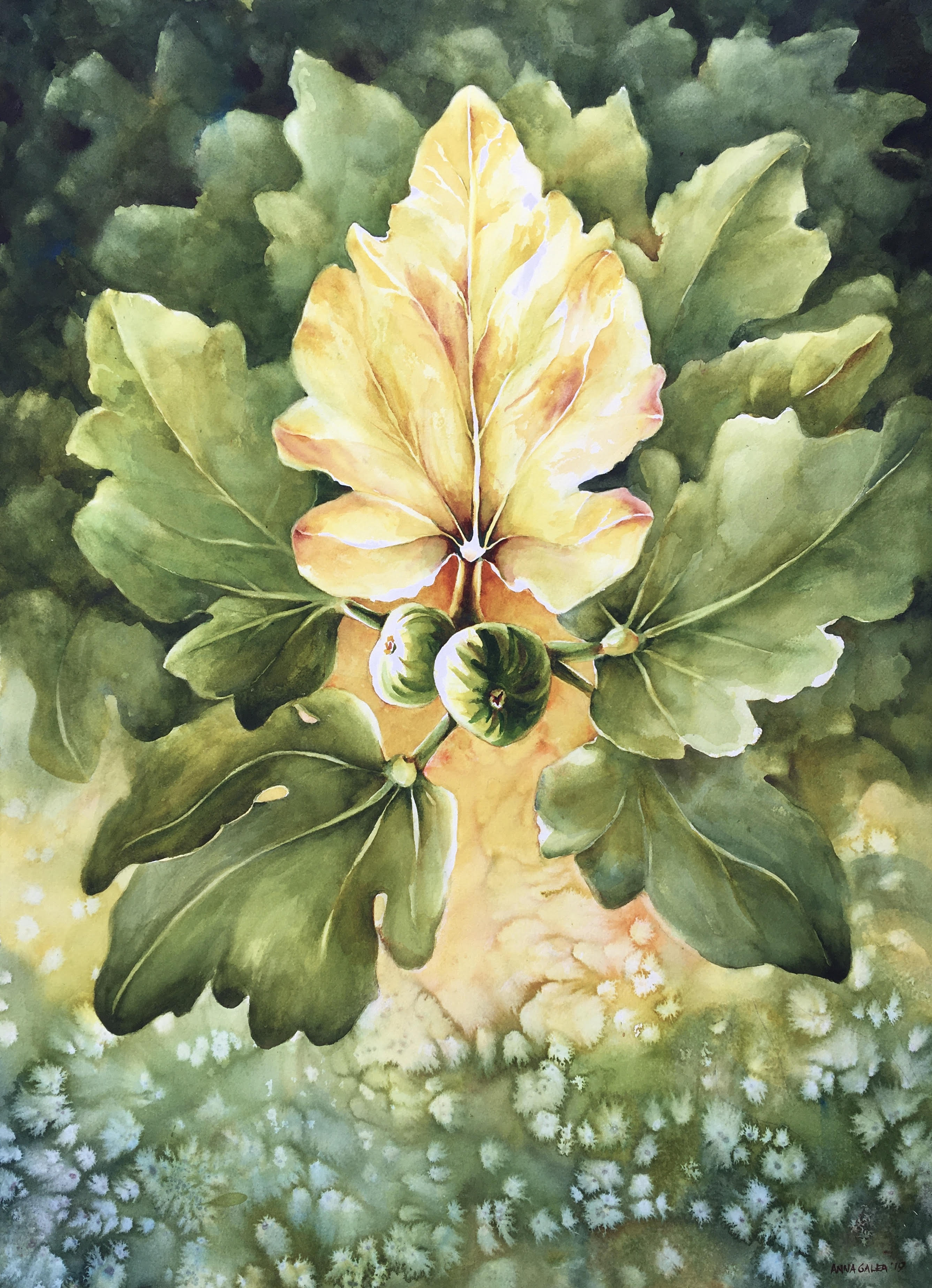 The Fig Leaf, 73X53cm, Watercolour