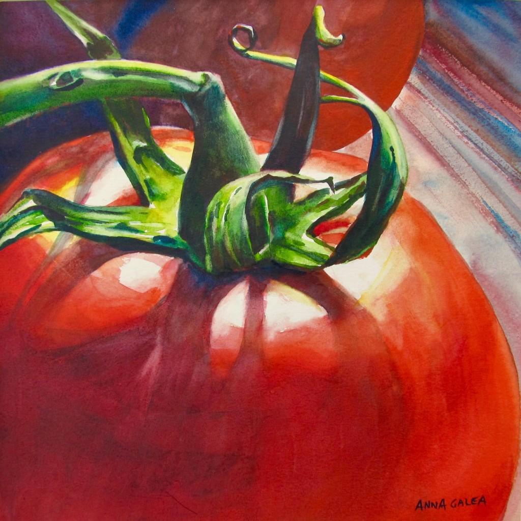 Tomato', 2012, Watercolour, 30x30cm, Anna Galea